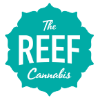 The-Reef-2021